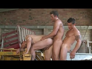 Muscle videos