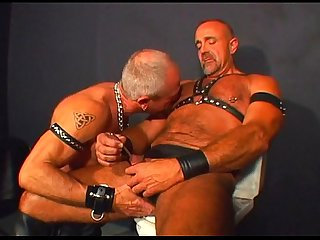 Pacific sun leather bears scene 2